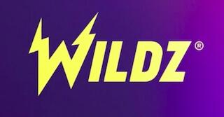 Wildzロゴ